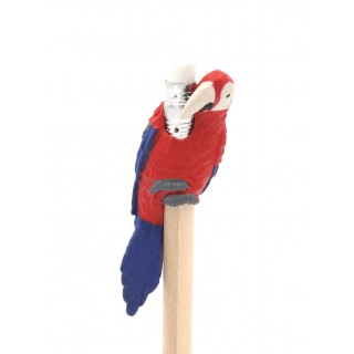 Macaw pencil