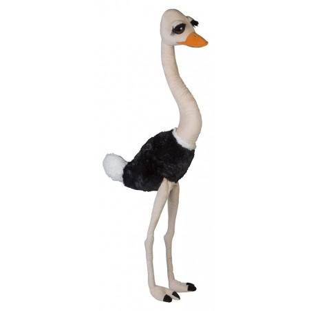Ostrich 40 in